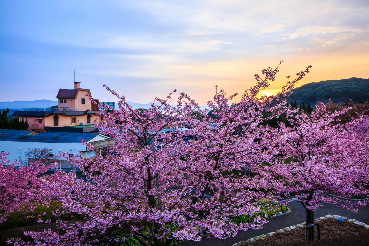 3 Trip Themes recommended for a trip to Sasebo