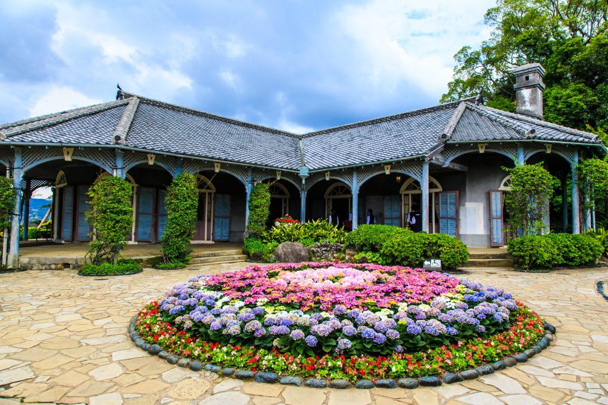 グラバー園を彩る紫陽花(Glover Garden covered with hydrangeas)