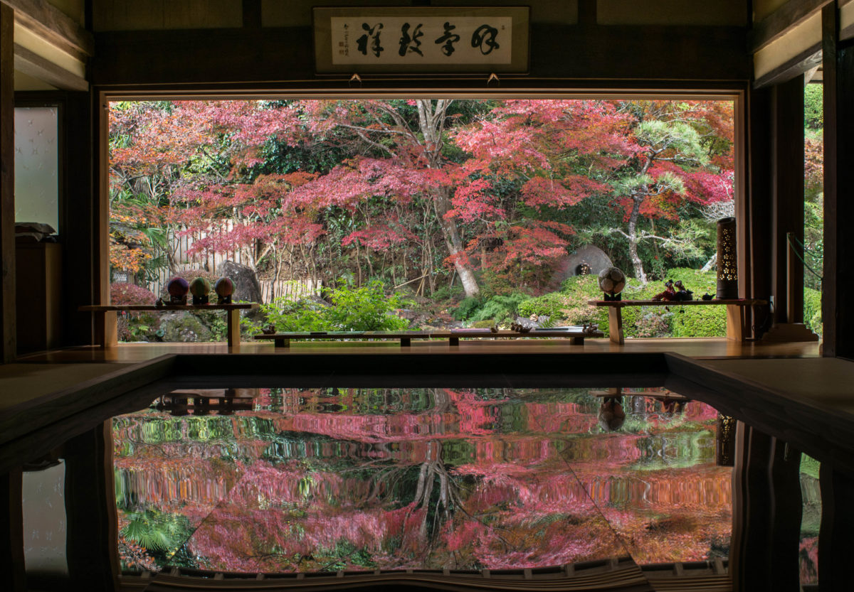 3 recommended spots for a trip to Sasebo in November fascinating with Inverted autumn leaves and local food