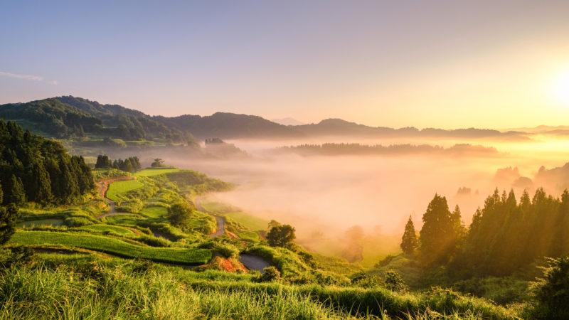 夏の星峠の棚田の景色(Scenery of Search Results Web results Hoshitoge Terraced Rice Fields in summer)