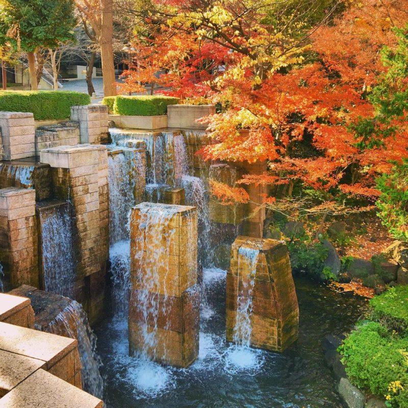 秋のプチ旅行やデートにおすすめ。インスタグラムの映え写真からセレクトした、品川&目黒の江戸時代から残る穴場的紅葉スポット3選