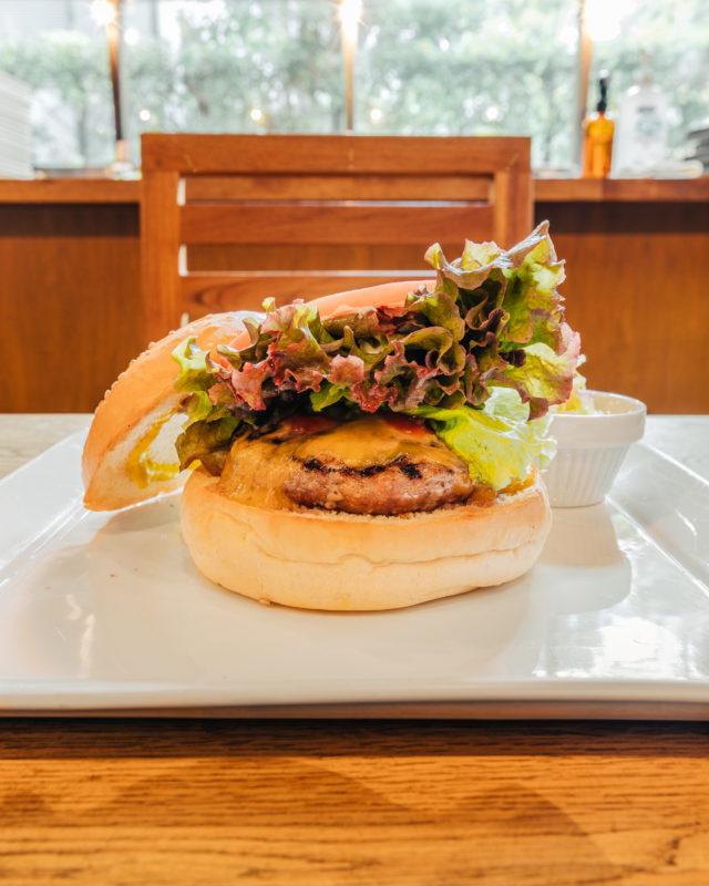 プレイスインザサンのハンバーガー( Hamburger offered by place in the sun)