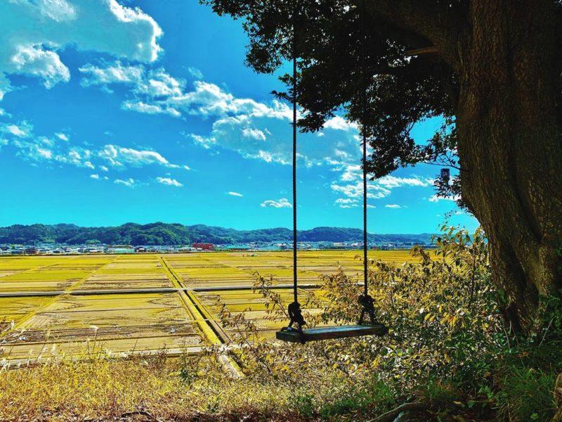自然×アートの映えスポット、市内最古の神社、寿司の隠れ名店を巡る。いわき駅周辺散策ルート