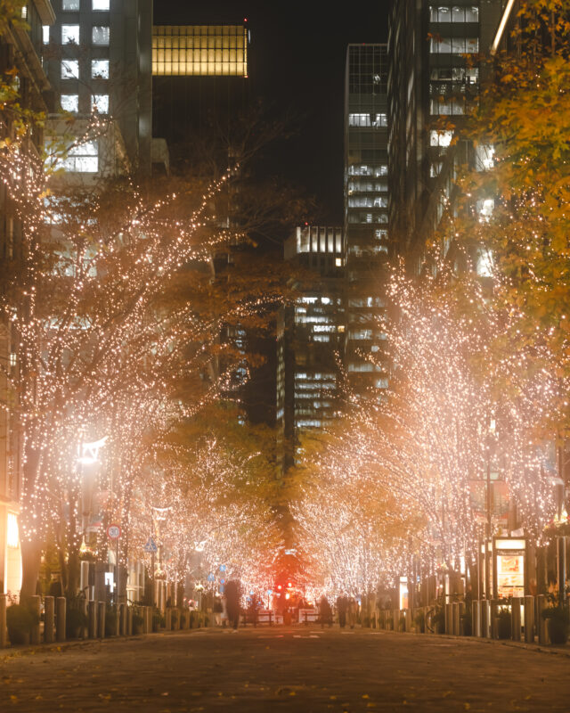 仕事帰りやショッピングがてら立ち寄りたい。煌びやかな光がロマンチックな景色を生み出す、東京都心で楽しめるイルミネーションスポット