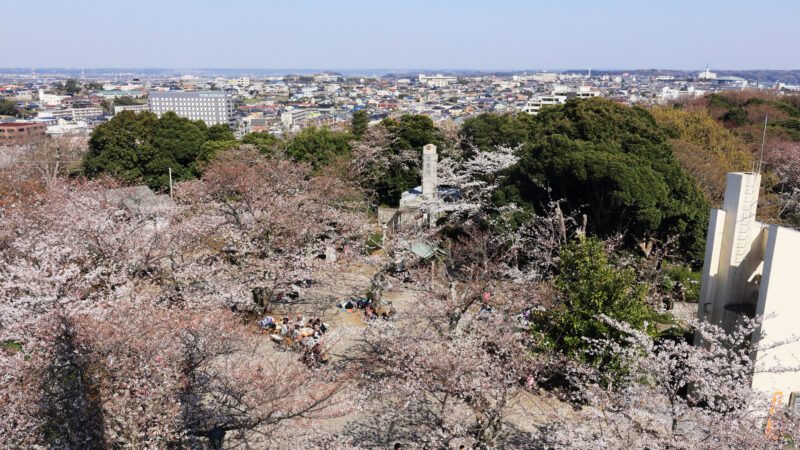 """木更津へお花見デート。市内随一の桜の名所、100本の桜が立ち並ぶ""""矢那川""""沿いの寺院とカフェでまったり過ごそう"""