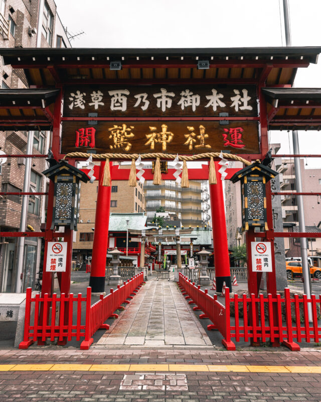 鷲神社の鳥居(Torii Gate of Otori Shrine)
