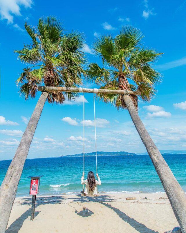 ヤシの木ブランコ(Plam Tree Swing)