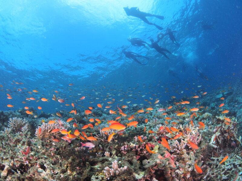 海遊びにバーベキュー!那覇ビーチリゾートで沖縄の夏をとことん遊び尽くす1日を